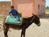 1334518792_marokko-feb-2009-830